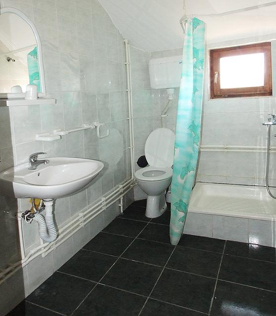 kupatilo u apartmanu 3, sokobanja